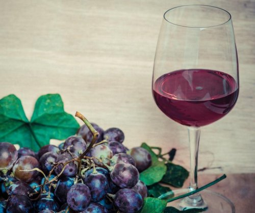 Compound found in chocolate, red wine said to slow Alzheimer's disease
