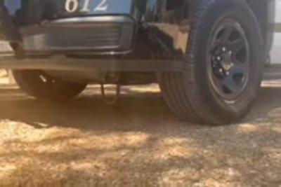 Police find stowaway snake on underside of patrol vehicle