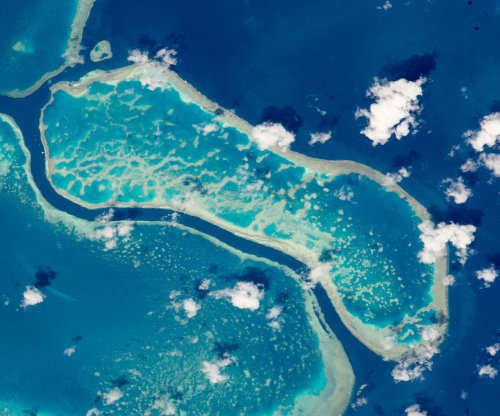 Rising sea levels may help select coral reefs