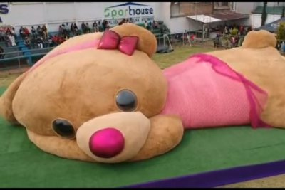 Giant teddy bear in Mexico named world's largest by Guinness