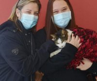 Cat reunited with Ontario family after 10 years