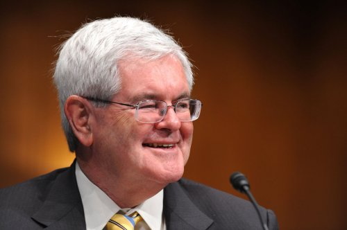 Gingrich assails Kagan at NRA event