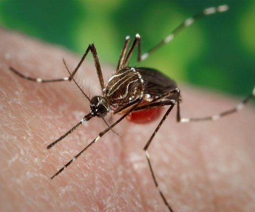 Some experts question extent of Zika threat to U.S.