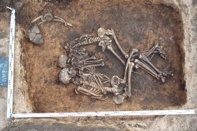 Scientists decode DNA of oldest bubonic plague bug