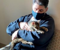 Lost cat reunited with California owner after 15 years