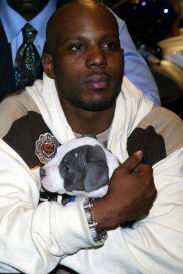 Rapper DMX jailed for probation violation