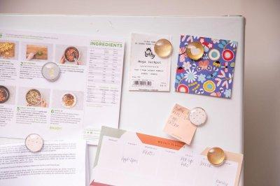 Winning lottery ticket spent 6 months on oblivious winner's fridge