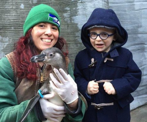 Anna Faris and Chris Pratt's son meets penguin he named Eagle