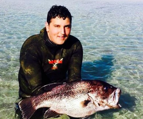 Australian teen dead in shark attack