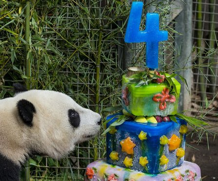 Judge rules 'Happy Birthday' song copyright invalid