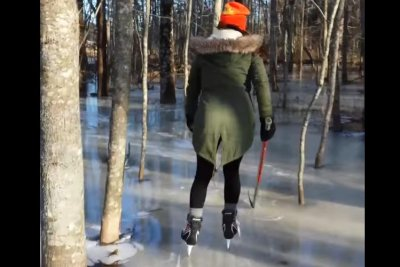 Frozen forest becomes tree-filled skating rink in Canada
