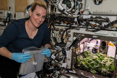 Astronauts eat first radishes grown in space as 2020 ends