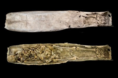 Grave of elderly woman found near King Richard III's burial site
