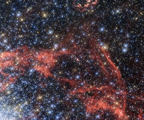 Astronomers search through supernova remnants for 'stellar survivor'