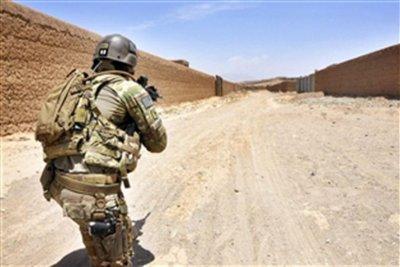 Eight Afghan police officers killed in errant U.S. airstrike