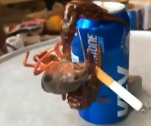 Crawfish clings to beer, smokes a cigarette