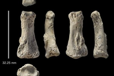 Ancient middle finger found in Saudi Arabia to reshape history of human migration