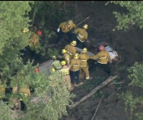 Firefighters rescue horse from deep mud in California