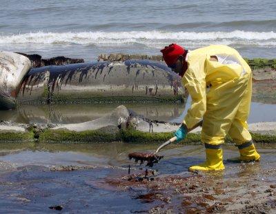 BP oil spill left 'bathtub ring' of oil covering more than 1,200 miles of seafloor