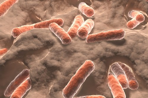 Drug-resistant bacteria greatly affects nursing home residents