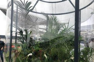 Polish shopping mall has world's largest terrarium