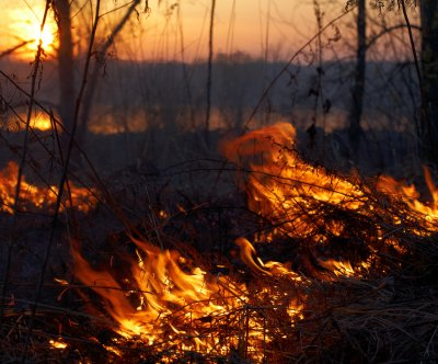 2015 wildfire season could be Alaska's worst ever