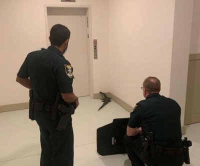 Alligator traps residents in elevator at apartment complex
