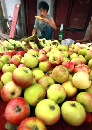 Consumer Corner: Food tracing a growing concern for global food supply