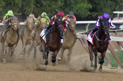 UPI Horse Racing Roundup: Catholic Boy wins at Saratoga