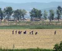 North Korea turns down $11 million of food aid from South
