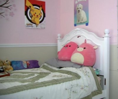 Radio signals picked up inside Illinois girl's bedroom wall
