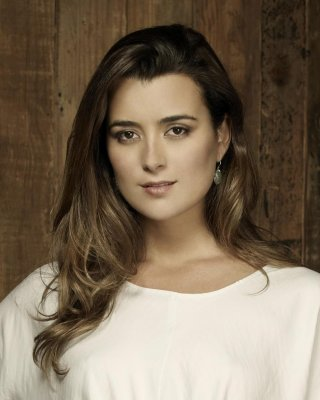 Cote de Pablo to star in 'Dovekeepers' miniseries on CBS