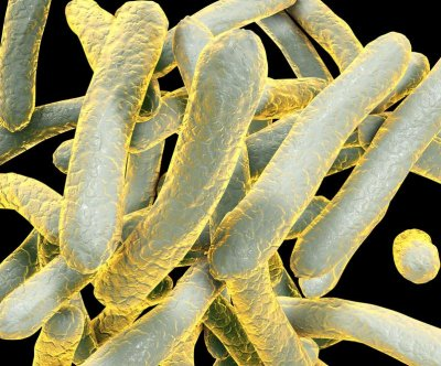 Antibodies may prevent tuberculosis infection, scientists say
