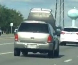 Florida man cited for driving with SUV's hood blocking view