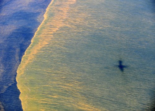 Blame flies in Gulf oil spill