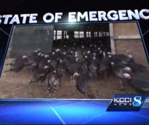Iowa declares state of emergency over fast-spreading bird flu