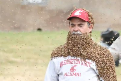 University administrator wears 'bee beard' to raise money for research center