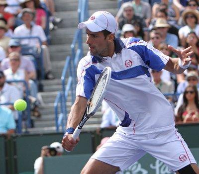 Djokovic, 29-0, ties year-start record