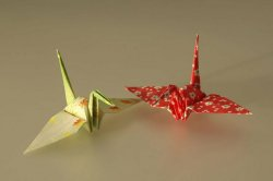 British teen folds 1,000 origami cranes in 9 1/2 hours for Guinness record