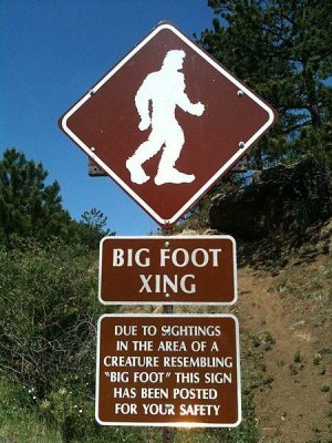 Researchers claim evidence of Russian Bigfoot