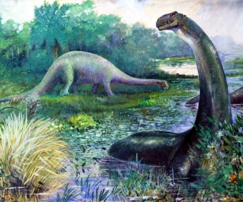 Denied a spot on the family tree for a century, brontosaurus may be back