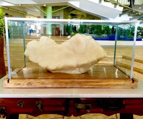 Philippines fisherman hid giant $100M pearl under bed for 10 years