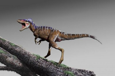 Tiny T. rex relative among earliest Cretaceous tyrannosaurs in N. America