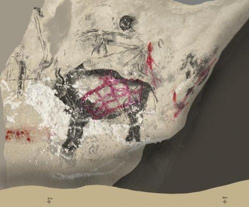 DNA study reveals unique bison species depicted in cave art