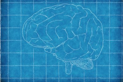 Decisions on risky behavior affected by brain activity while idle