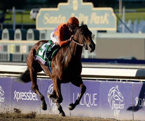 Breeders' Cup preview: Distaff pits Songbird vs Beholder and Stellar Wind