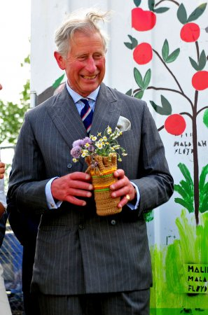 Prince Charles fills in as BBC weatherman