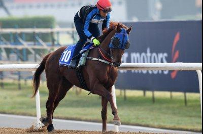 UPI Horse Racing Preview: Dubai World Cup, Kentucky Derby preps