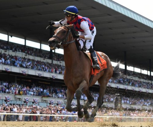 Improbable, War of Will, Mr. Money, Guarana to compete in $1M races