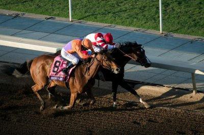 UPI Horse Racing Weekend Preview: Belmont Stakes wide open